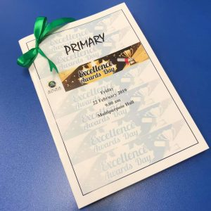 APSS Primary Excellence Award 2018